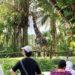 シンガポールの三大動物園に行ってみよう☆リバーサファリ・シンガポールズー・ナイトサファリの魅力を一挙公開!